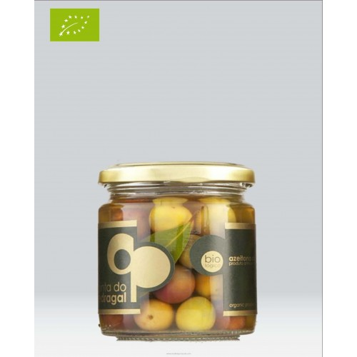 Biological Table Olive Galega 125 Grams