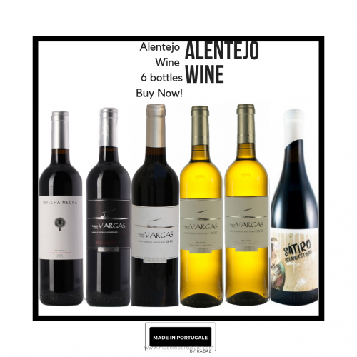 Pack 6 Alentejo Wines By Manuel Vargas