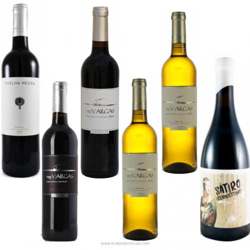 Pack 6 Alentejo Wines By Manuel Vargas