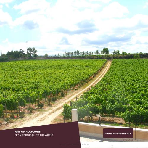 Quinta de Linhares PACK Vinhos Verdes 6 X 750ml