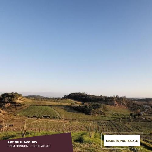 Argênteo Reserva Sparkling Wine Bairrada VEQPRD 2016