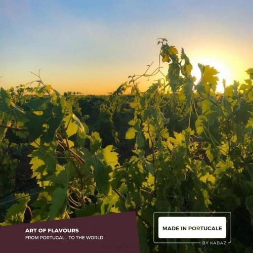 Joaquim Costa Vargas Reserve - Red Wine 2014