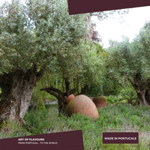 Extra Virgin Olive Oil Oregano Flavoured Devotion 500ml